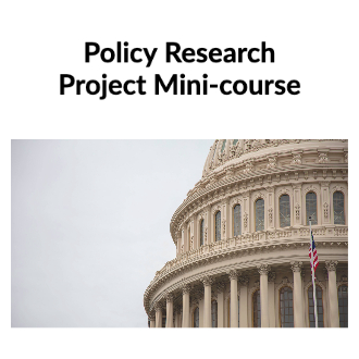 Government Policy Project Mini-courseThe Law Mini-course product image
